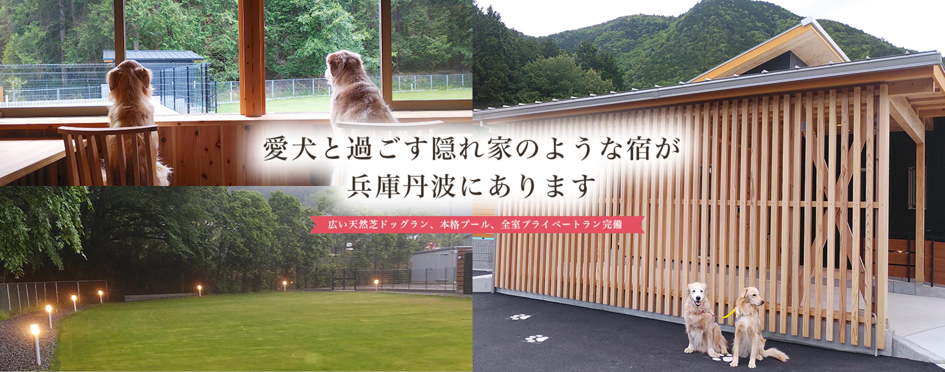 愛犬と過ごす隠れ家のような宿が兵庫丹波にあります 広い天然芝ドッグラン、本格プール、全室プライベートラン完備